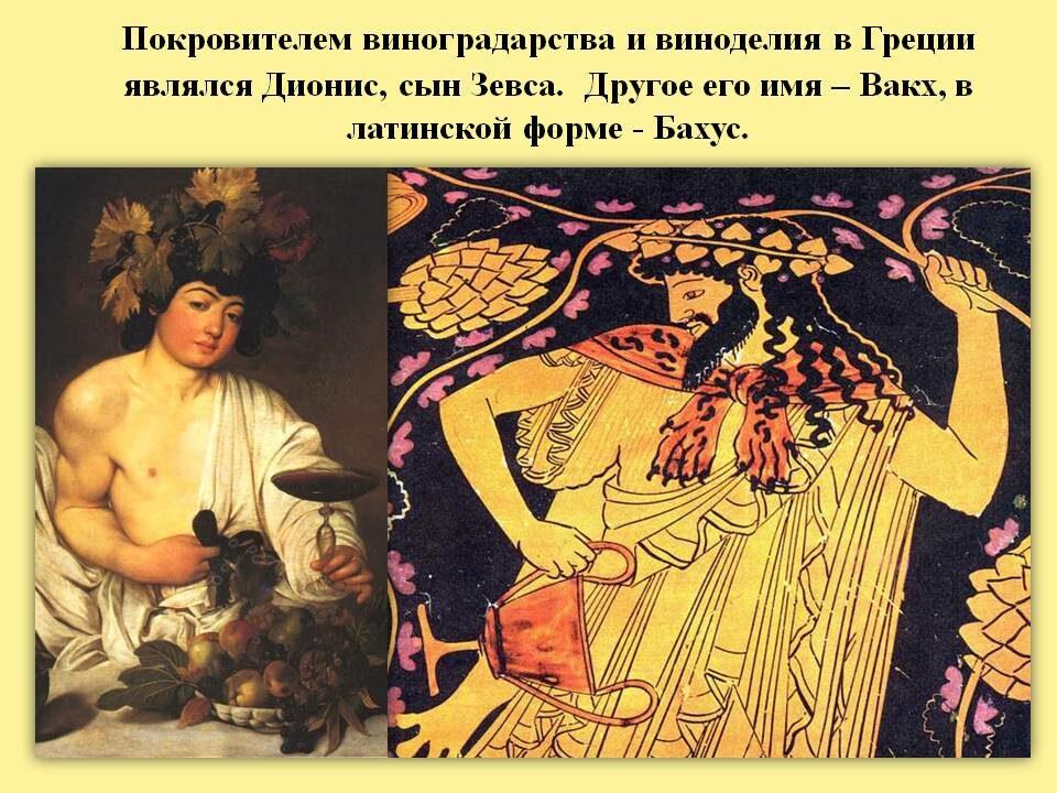 БОГ виноделия Дионис.   Из истории виноделия.
